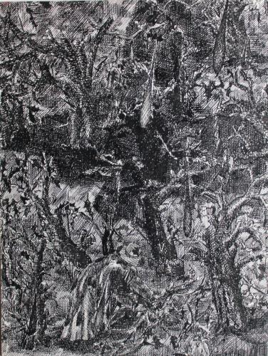 Ink drawing - Among the Trees
